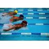 Школа обучению плаванию